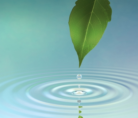 A water drop from a leaf causing a ripple on the surface reflecting a green jungle atmosphere Standard-Bild