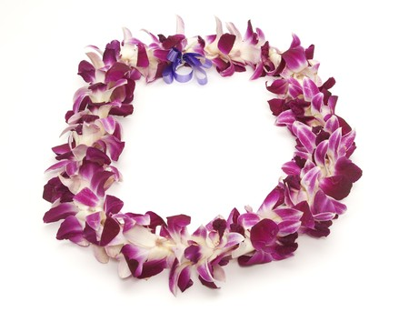 PolynesianHawaiian lei shot on white