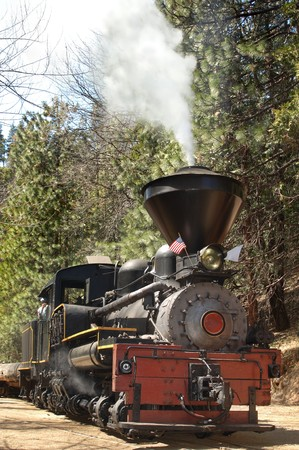 Vertical shot of a vintage steam logomotive in a pine forest photo