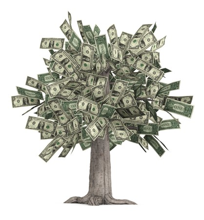us money: This is a high-resolution 3d render of a rooted tree with a thick stock that is growing currency for its leaves over a white background.