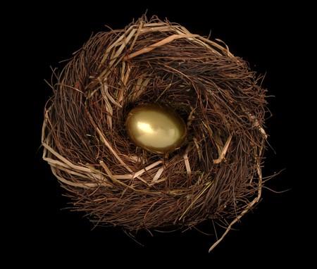 Golden egg in a birds nest on a black background