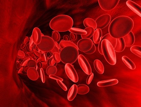 globulo rojo: una representaci�n 3d de las c�lulas de sangre roja dentro de la vena.
