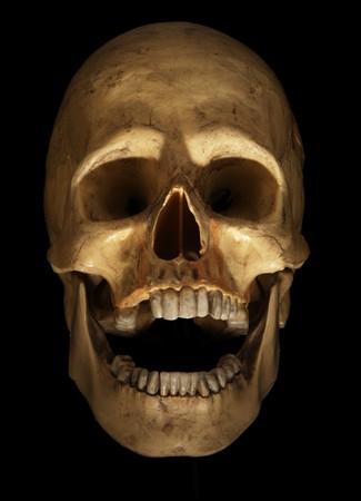 menselijke schedel op zwart