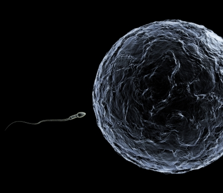 human sperm: A Sperm swimming toward the egg at a microscopic zoom over black Stock Photo