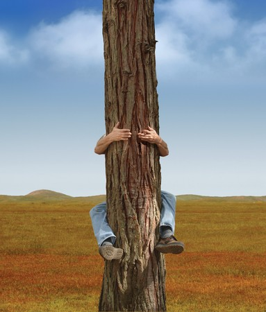 man hugging a tree in an open field