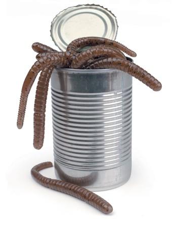can of worms on white Zdjęcie Seryjne