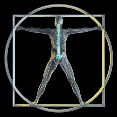 radiology: A 3d generated person posed like the famous Vitruvian Man (Symbol of health) rendered in a x-ray style highlighting the spine. Stock Photo