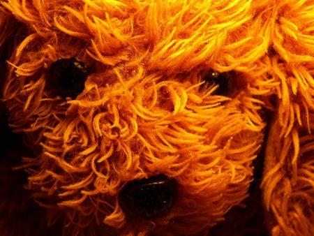 Dog toy Stock Photo