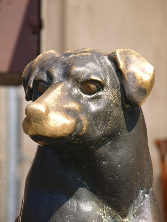 kazmierz dolny: Bronze statue of dog in Kazmierz Dolny, Poland