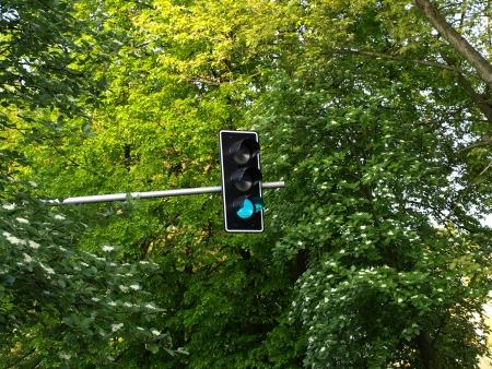 Green traffic light near trees photo