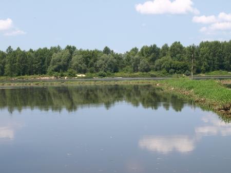 Vistula river in Poland