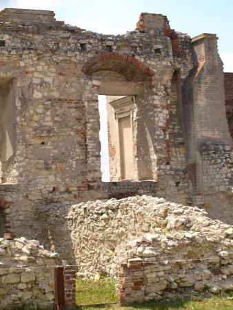 lubelskie: Old castle details