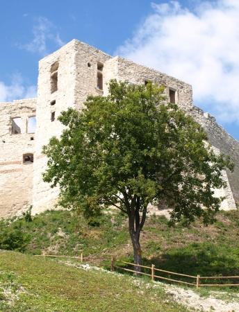 lubelskie: Castle ruins in Kazimierz Dolny in Poland