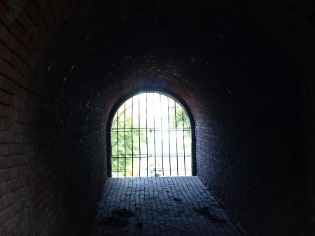 Old dark gate