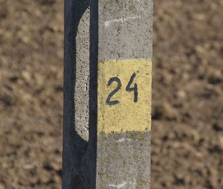 Concrete field with number 24