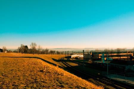 sun lit: morning sun lit the grass into golden fields