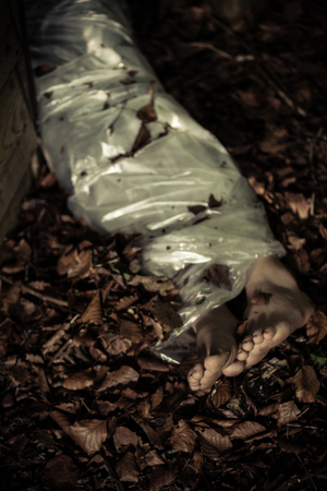 fatality: Legs of a discarded corpse in leafy detritus in woodland wrapped in a sheet conceptual of a victim and crime Stock Photo