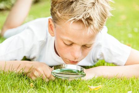 peers: Blond boy wearing white shirt and shorts peers at grass with magnifying glass in his yard on a sunny day