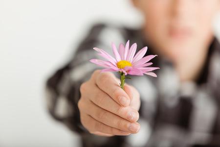 generosity: Cierre para arriba de muchacho joven que da delicado p�rpura de la flor de la margarita hacia la c�mara con difuso Vista del muchacho en el fondo - La generosidad y la imagen del concepto de perd�n