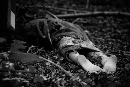 gruesome: Crop grayscale shot of corpse wrapped in rug with bare feet sticking out laying face down on ground in woods Stock Photo