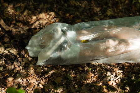 Legs of a dead boys body wrapped in plastic and discarded amongst the dead autumn leaves in a forest Stock Photo