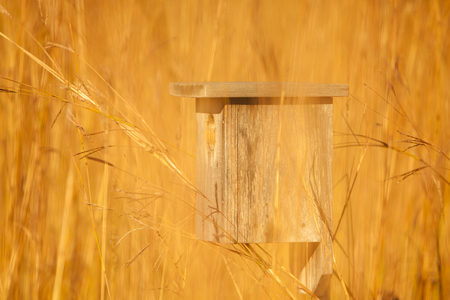birdhouse: Birdhouse in a field of grass.