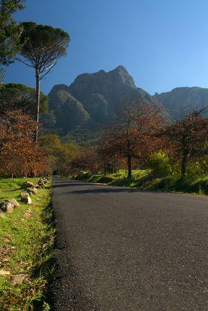en mont�e: Mont�e vers la route de montagne