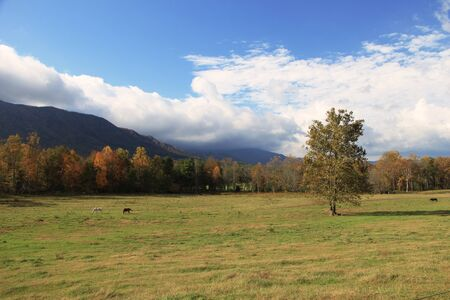 Scenic view of the Smoky Mountains Stock Photo