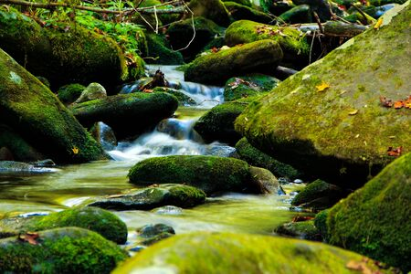 Water cascading through rocks in the Smoky Mountains Stock Photo - 145007536