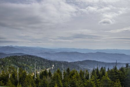 Hemlock trees and mountain view near Clingmans Dome Stock Photo