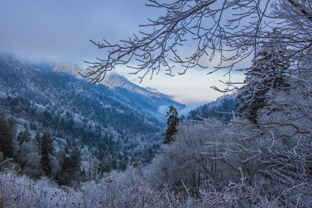 Winter in The Great Smoky Mountains Stock Photo