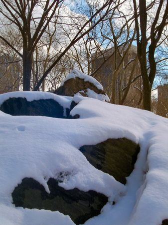 Winter in NYC Stock Photo - 351334