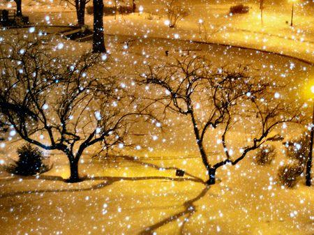 D'hiver � New York Banque d'images