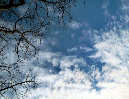 Winter Sky photo