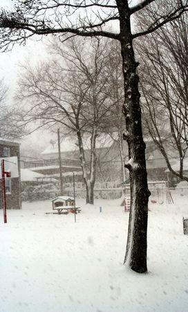 Snow day Stock Photo - 361333