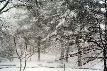 Snow day Stock Photo - 361325
