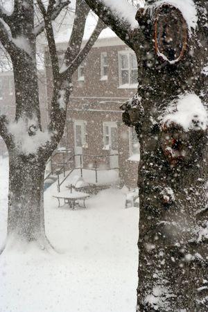 Snow day Stock Photo - 361326