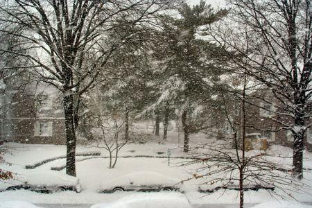 Snow day Stock Photo - 361322