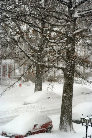 Snow day Stock Photo - 361323