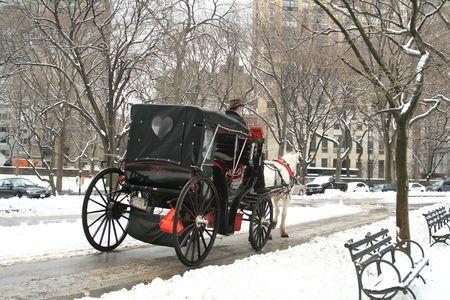 central: Invierno de nieve en Central Park, Nueva York