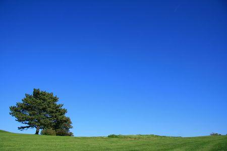 夏の時間で晴れた日に国の風景
