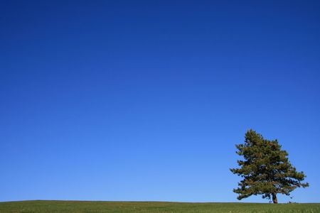 clear blue sky: Country Landscape on a clear Blue Day