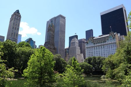 Summer Time in Central Park and Manhattan Skyline, New York City  版權商用圖片