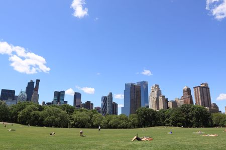 Summer Time in Central Park and Manhattan Skyline, New York City  Stock Photo