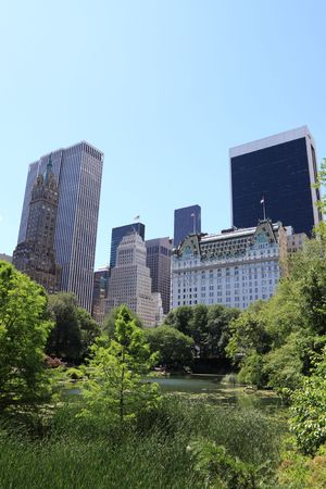 Summer Time in Central Park and Manhattan Skyline, New York City Stock Photo - 8052753