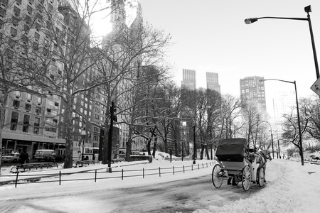 Winter Snow in Central Park, New York City Stock Photo - 12972570