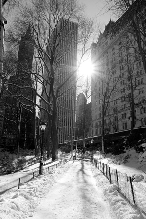 Winter Snow in Central Park, New York City Stock Photo - 12972567