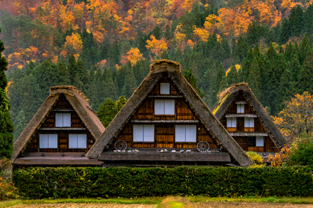 Traditional Houses in the Gassho Style in Ogimachi Village. A UNESCO World Heritage Site in the Japan - Gifu Prefecture. Editorial