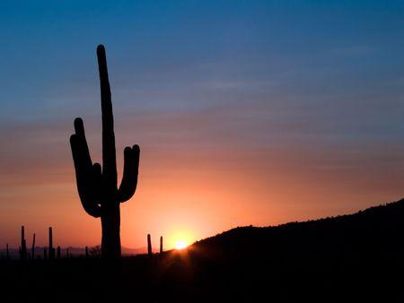 prominent: Classic southwestern United States sunset Stock Photo