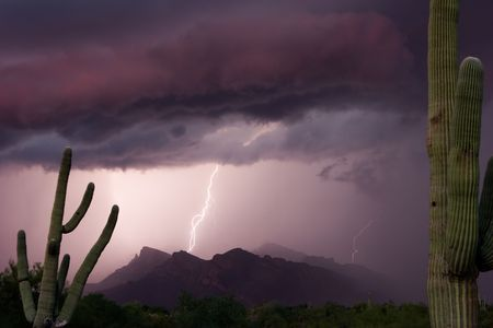 Saguaros frame a summer thundershower over the Catalina Mountains